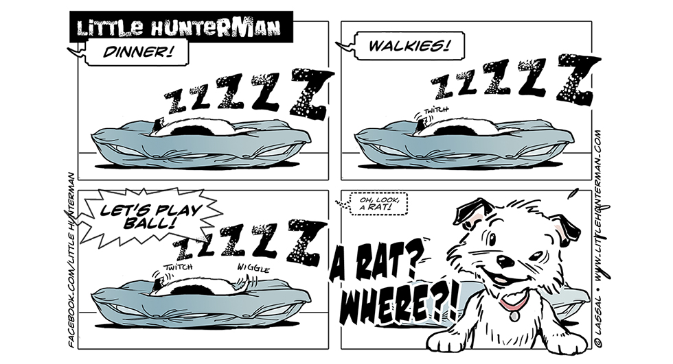 Little Hunterman Daily Cartoons, Priorities