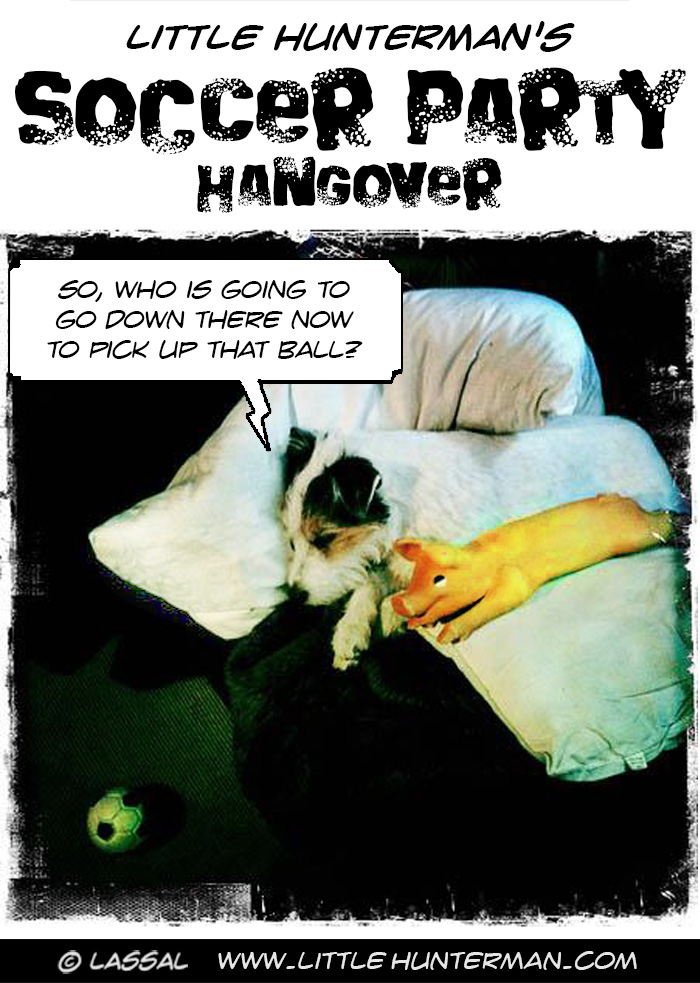 Soccer Party Hangover
