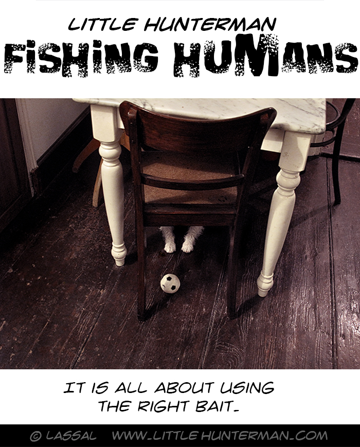 Catching Humans