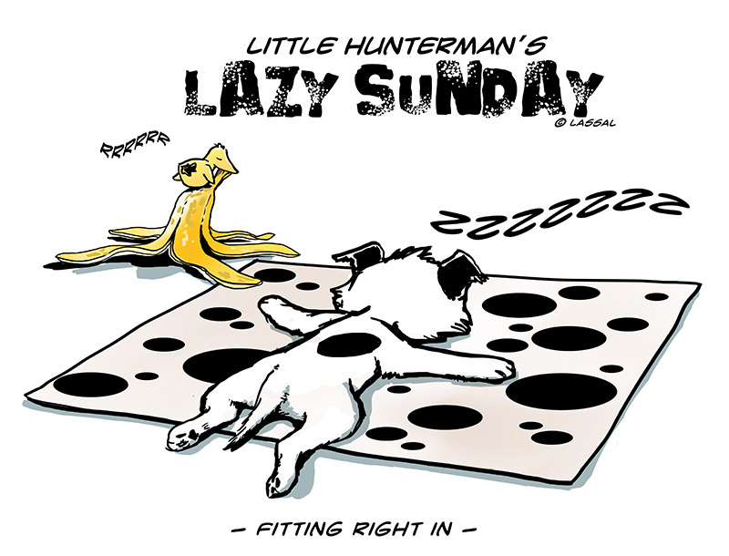 Lazy Sunday – With Worries