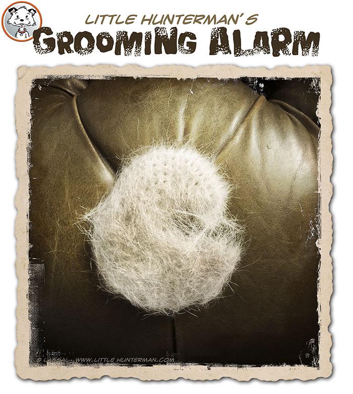 LittleHunterman-groomer-alarm-700