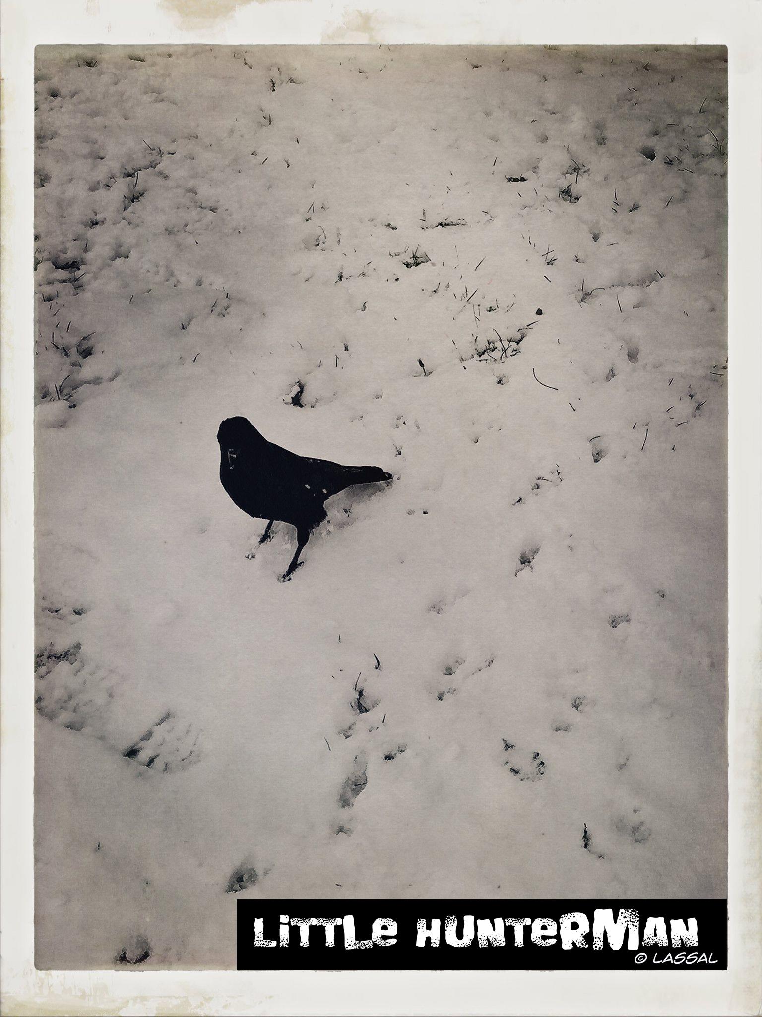 Hinkemann in the snow